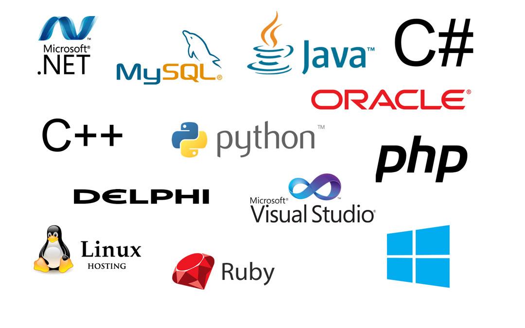 Microsoft Dynamics multi-lingual customer relationship management application
