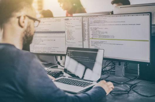 ASP.Net Custom Software programming